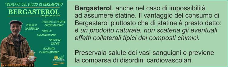 Bergasterol-elimina-le-statine